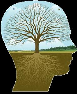 transpersonal_psychology1